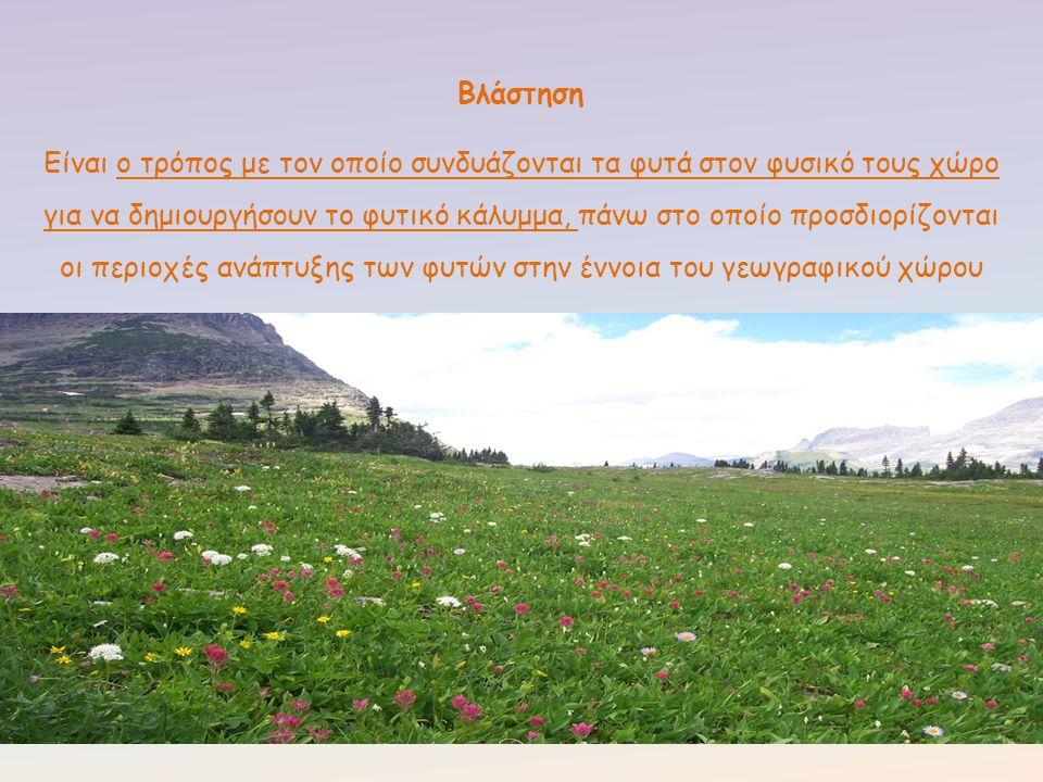 Ένα άλλο χαρακτηριστικό της ελληνικής χλωρίδας είναι το πλήθος των αυτοφυών αρωματικών και φαρμακευτικών φυτών της