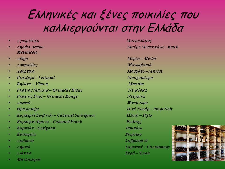 Ελληνικές και ξένες ποικιλίες που καλλιεργούνται στην Ελλάδα Αγιωργίτικο Μαυροδάφνη Αηδάνι Άσπρο Μαύρο Μεσενικόλα – Black Mesenicola Αθήρι Μερλό – Mer