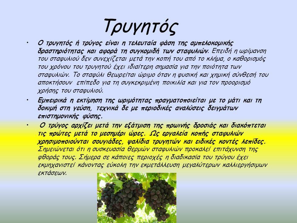 Ελληνικές και ξένες ποικιλίες που καλλιεργούνται στην Ελλάδα Αγιωργίτικο Μαυροδάφνη Αηδάνι Άσπρο Μαύρο Μεσενικόλα – Black Mesenicola Αθήρι Μερλό – Merlot Ασπρούδες Μονεμβασιά Ασύρτικο Μοσχάτο – Muscat Βερτζαμί – Vertzami Μοσχοφίλερο Βηλάνα – Vilana Μπατίκι Γκρενάς Μπλανκ – Grenache Blanc Νεγκόσκα Γκρενάς Ρουζ – Grenache Rouge Ντεμπίνα Δαφνιά Ξινόμαυρο Θραψαθήρι Πινό Νουάρ – Pinot Noir Καμπερνέ Σωβινιόν – Cabernet Sauvignon Πλυτό – Plyto Καμπερνέ Φρανκ – Cabernet Frank Ροδίτης Καρινιάν – Carignan Ρομπόλα Κοτσιφάλι Ρωμέικο Λαδικινό Σαββατιανό Λημνιό Σαρντονέ – Chardonnay Λιάτικο Συρά – Syrah Μανδηλαριά