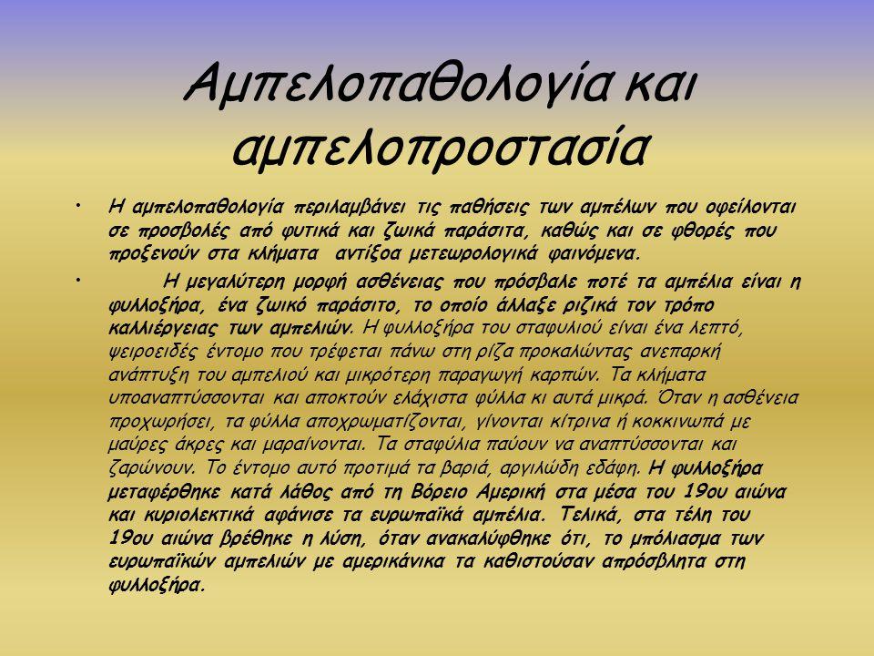 Αμπελοπαθολογία και αμπελοπροστασία Η αμπελοπαθολογία περιλαμβάνει τις παθήσεις των αμπέλων που οφείλονται σε προσβολές από φυτικά και ζωικά παράσιτα,