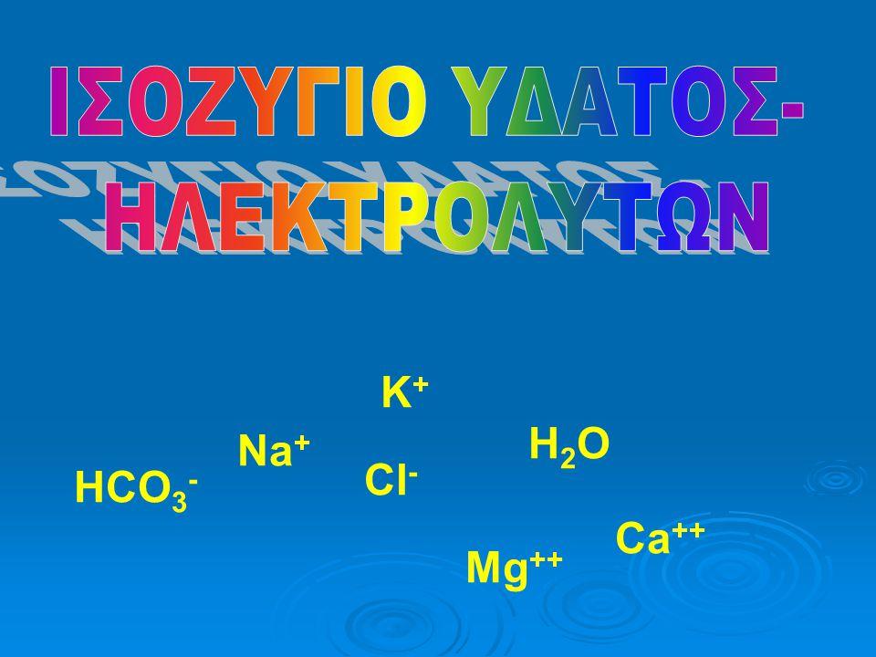 Κ+Κ+ H2OH2O Na + Ca ++ Cl - HCO 3 - Mg ++