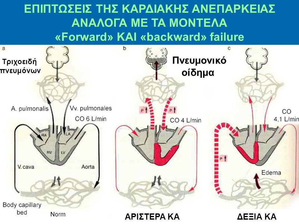 Σε ανεπάρκεια αρ. καρδίας 1 3 2 1 Μεταφορά πίεσης προς τα πίσω Εμφάνιση πνευμονικού οιδήματος 2 3