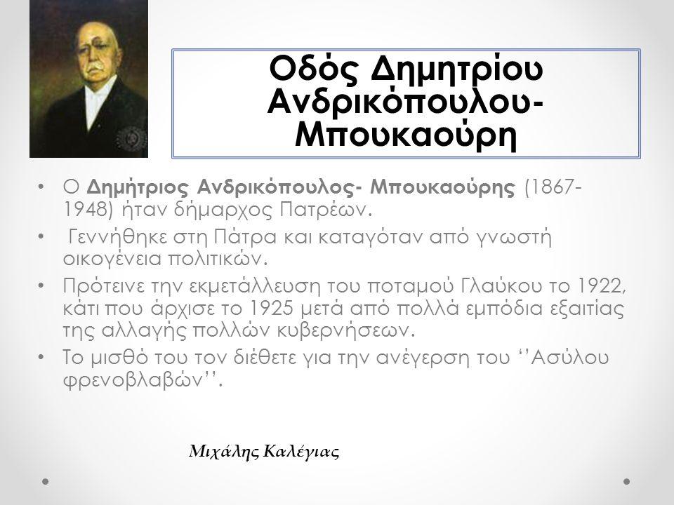 Ο Δημήτριος Ανδρικόπουλος- Μπουκαούρης (1867- 1948) ήταν δήμαρχος Πατρέων.