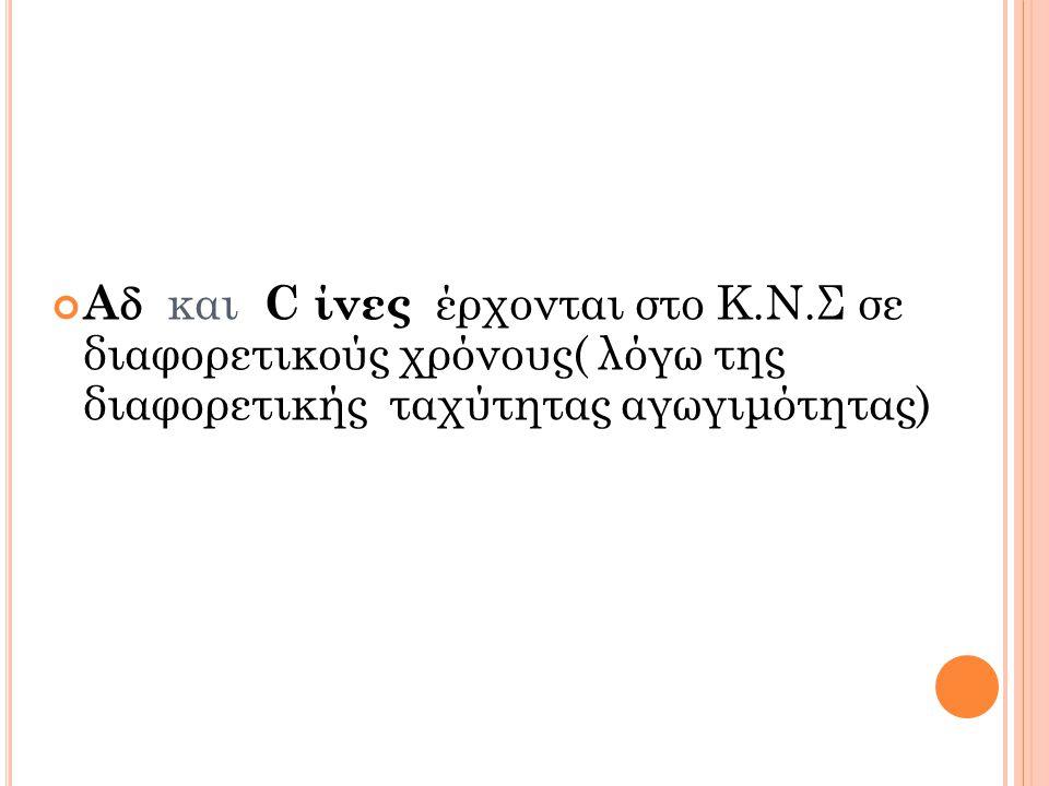 A  και C ίνες έρχονται στο Κ.Ν.Σ σε διαφορετικούς χρόνους( λόγω της διαφορετικής ταχύτητας αγωγιμότητας)