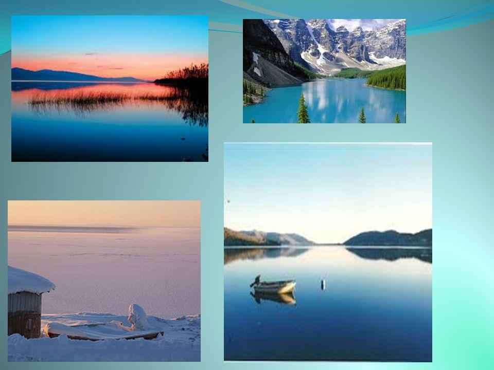 Η Μεγάλη Λίμνη της Αρκούδας (στα αγγλικά Great Bear Lake, Γκρέιτ Μπέαρ Λέικ) είναι η μεγαλύτερη λίμνη που βρίσκεται ολόκληρη στην επικράτεια του Καναδ