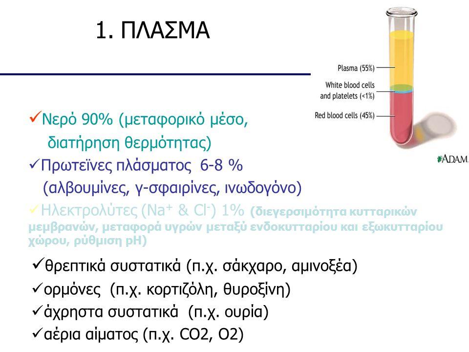 1. ΠΛΑΣΜΑ Νερό 90% (μεταφορικό μέσο, διατήρηση θερμότητας) Πρωτεϊνες πλάσματος 6-8 % (αλβουμίνες, γ-σφαιρίνες, ινωδογόνο) Ηλεκτρολύτες (Na + & Cl - )