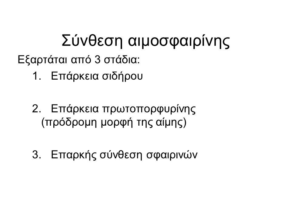 Σύνθεση αιμοσφαιρίνης Εξαρτάται από 3 στάδια: 1. Επάρκεια σιδήρου 2. Επάρκεια πρωτοπορφυρίνης (πρόδρομη μορφή της αίμης) 3. Επαρκής σύνθεση σφαιρινών