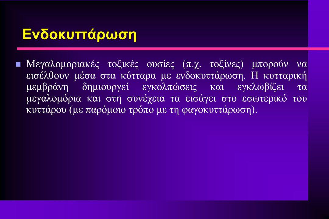 n Μεγαλομοριακές τοξικές ουσίες (π.χ.