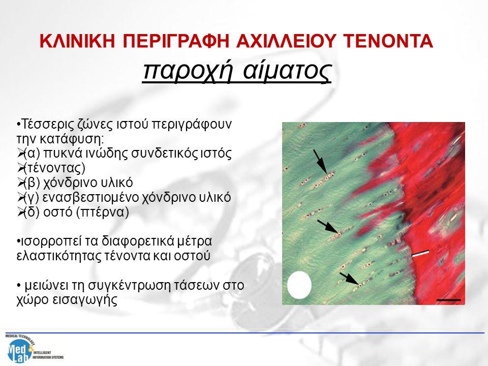 Η ένθεση έχει ύψος γύρω στα 2 cm και πλάτος γύρω στα 2,4 cm πάνω και 3,1 cm κάτω Στην περιοχή της κατάφυσης ο τένοντας πλευροκοπείται από 2 ορογόνους θύλακες Αυτοί διευκολύνουν την κίνηση της επιδερμίδας και του τένοντα & εξομαλύνουν το τασικό πεδίο στην περιοχή ΚΛΙΝΙΚΗ ΠΕΡΙΓΡΑΦΗ ΑΧΙΛΛΕΙΟΥ ΤΕΝΟΝΤΑ παροχή αίματος