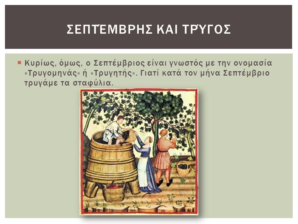  Κυρίως, όμως, ο Σεπτέμβριος είναι γνωστός με την ονομασία «Τρυγομηνάς» ή «Τρυγητής». Γιατί κατά τον μήνα Σεπτέμβριο τρυγάμε τα σταφύλια. ΣΕΠΤΈΜΒΡΗΣ