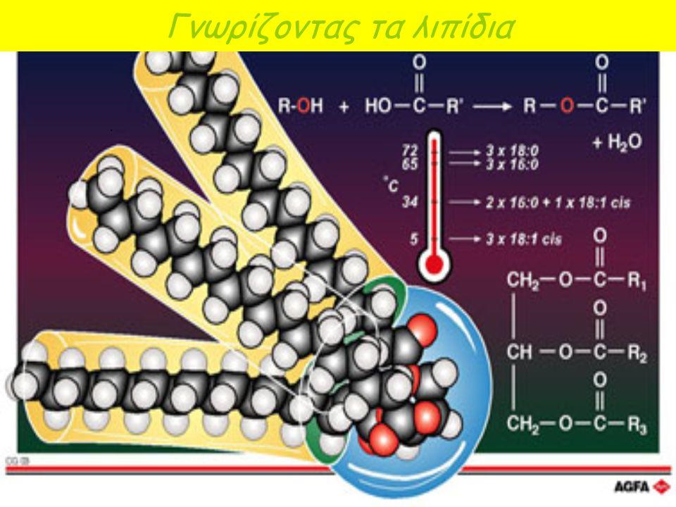 Λιπίδια. Λιπίδια ονομάζονται διάφορες χημικές ενώσεις που έχουν κοινό χαρακτηριστικό γνώρισμα το ότι είναι αδιάλυτες στο νερό. Ουσίες αδιάλυτες στο νε