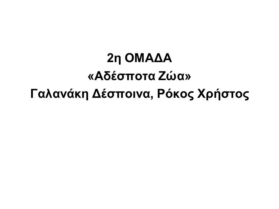 2η ΟΜΑΔΑ «Αδέσποτα Ζώα» Γαλανάκη Δέσποινα, Ρόκος Χρήστος