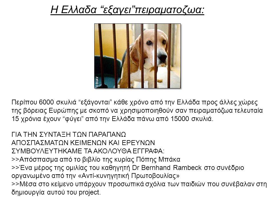 Η Ελλαδα εξαγει πειραματοζωα: Περίπου 6000 σκυλιά εξάγονται κάθε χρόνο από την Ελλάδα προς άλλες χώρες της βόρειας Ευρώπης με σκοπό να χρησιμοποιηθούν σαν πειραματόζωα τελευταία 15 χρόνια έχουν φύγει από την Ελλάδα πάνω από 15000 σκυλιά.