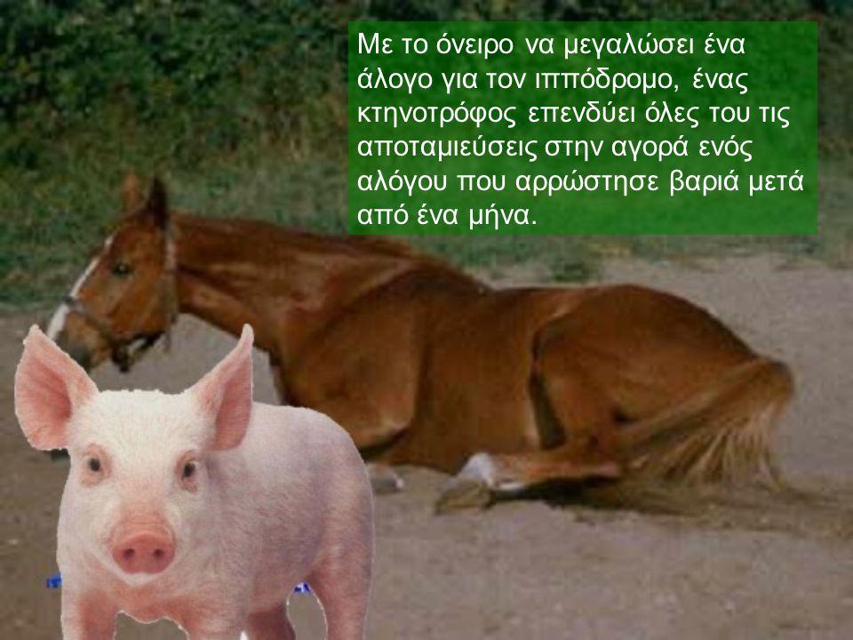 Με το όνειρο να μεγαλώσει ένα άλογο για τον ιππόδρομο, ένας κτηνοτρόφος επενδύει όλες του τις αποταμιεύσεις στην αγορά ενός αλόγου που αρρώστησε βαριά