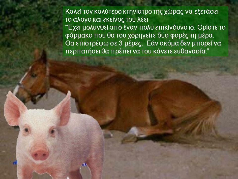 """Καλεί τον καλύτερο κτηνίατρο της χώρας να εξετάσει το άλογο και εκείνος του λέει """"Έχει μολυνθεί από έναν πολύ επικίνδυνο ιό. Ορίστε το φάρμακο που θα"""