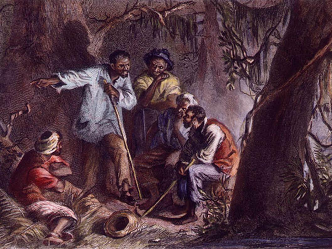 ΑΠΟΙΚΙΕΣ ΤΟΥ ΝΟΤΟΥ ● 1763: 750.000 κάτοικοι, από τους οποίους 300.000 μαύροι σκλάβοι.