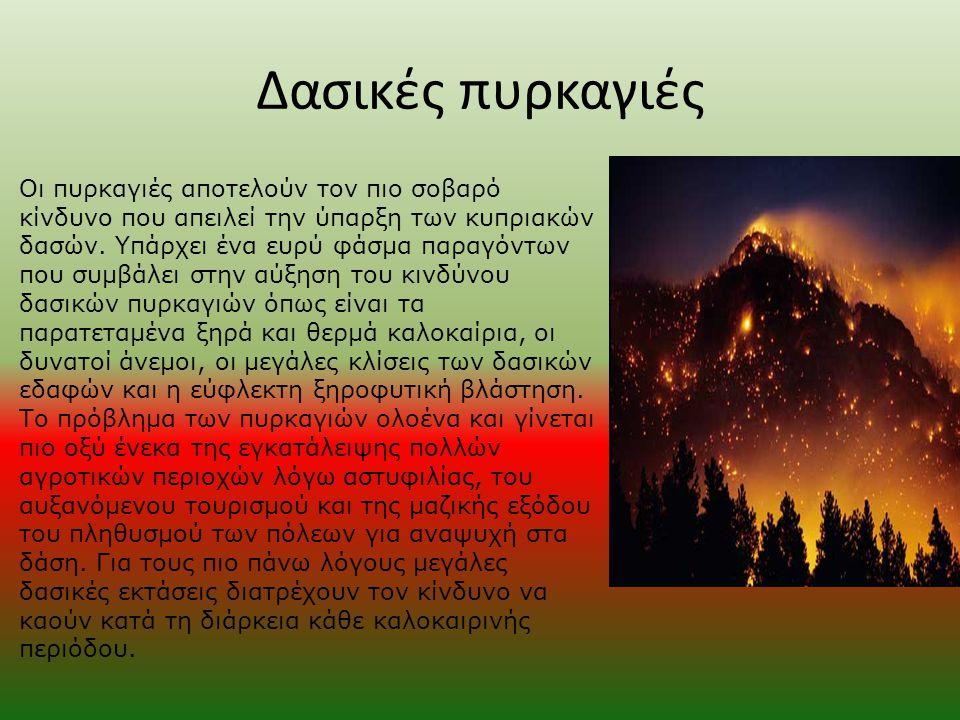 Δασικές πυρκαγιές Οι πυρκαγιές αποτελούν τον πιο σοβαρό κίνδυνο που απειλεί την ύπαρξη των κυπριακών δασών. Yπάρχει ένα ευρύ φάσμα παραγόντων που συμβ