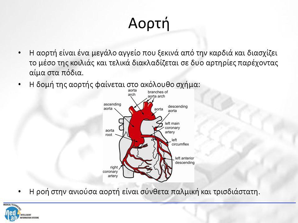 Αορτή Η αορτή είναι ένα μεγάλο αγγείο που ξεκινά από την καρδιά και διασχίζει το μέσο της κοιλιάς και τελικά διακλαδίζεται σε δυο αρτηρίες παρέχοντας