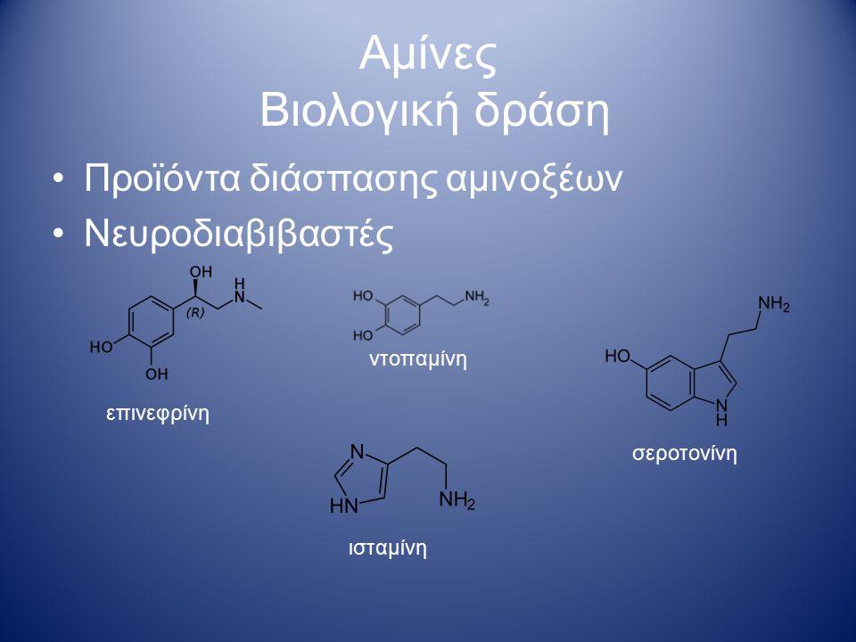 Αμίνες Φαρμακευτική δράση Chlorphenamine Αντιισταμινικό Ephedrin Καρδιακή/ πνευμονική αποσυμφόρηση Amphetamine Methamphetamine Έχει χρησιμοποιηθεί στην αντιμετώπιση του συνδρόμου Attention deficit hyperactivity disorder Clomipramine αντικαταθλιπτικό