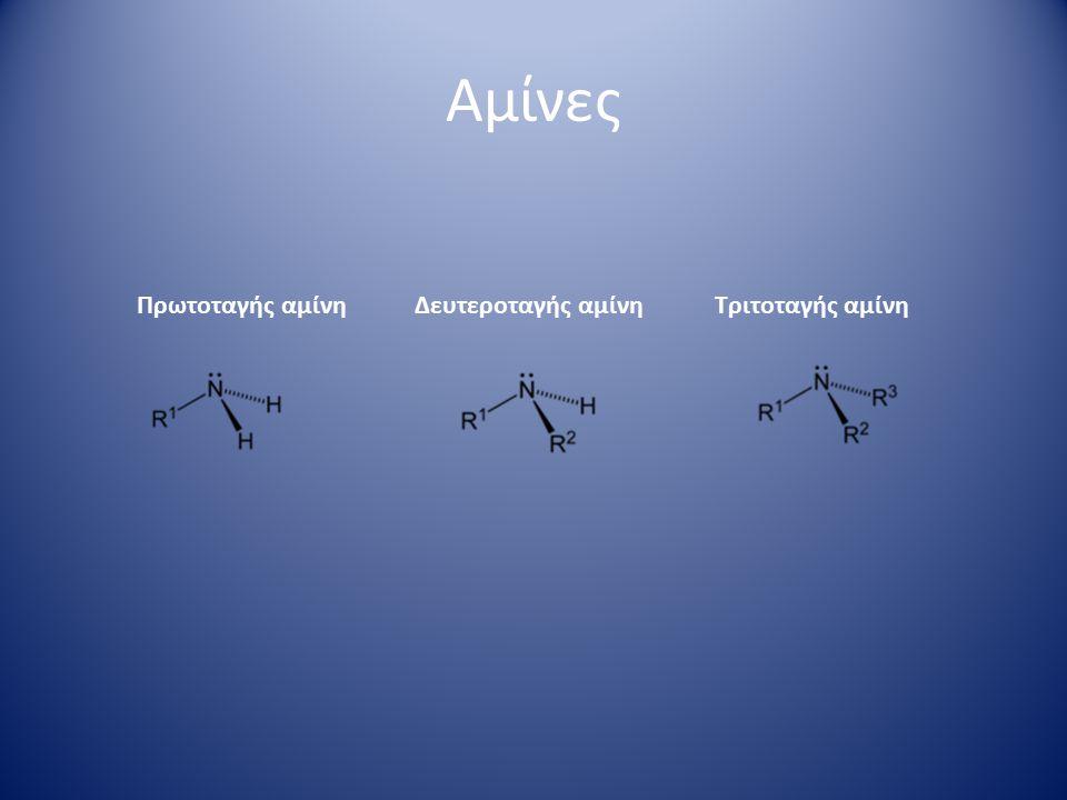 Αμίνες ατροπίνη μορφίνη νικοτίνη Βιταμίνη Β1