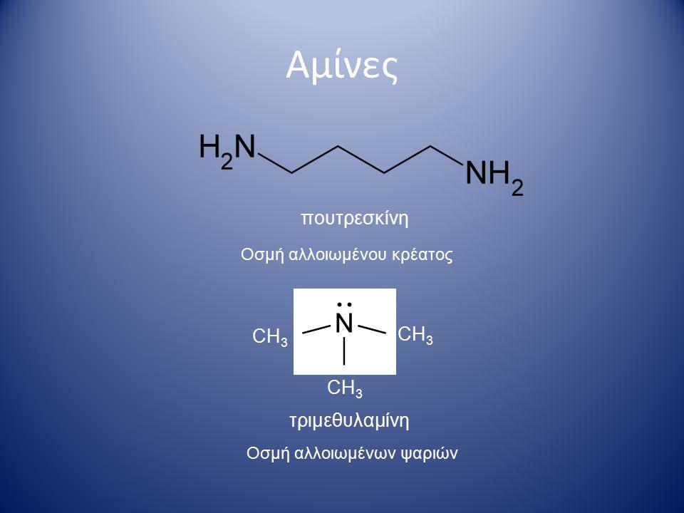 Αμίνες Ονοματολογία 1- προπυλαμίνη 1- αμινοπροπάνιο  Πρωτοταγείς αμίνες  Δευτεροταγείς και τριτοταγείς αμίνες αιθυλομεθυλαμίνη διφαινυλαμίνη