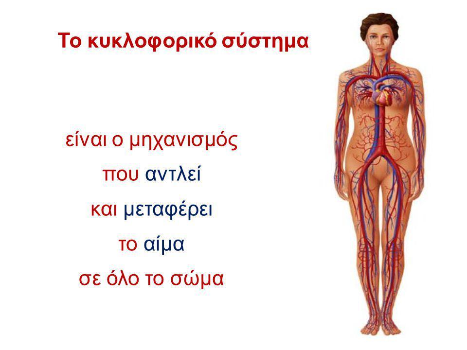 Το κυκλοφορικό σύστημα είναι ο μηχανισμός που αντλεί και μεταφέρει το αίμα σε όλο το σώμα