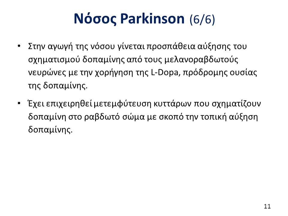 Νόσος Parkinson (6/6) Στην αγωγή της νόσου γίνεται προσπάθεια αύξησης του σχηματισμού δοπαμίνης από τους μελανοραβδωτούς νευρώνες με την χορήγηση της L-Dopa, πρόδρομης ουσίας της δοπαμίνης.