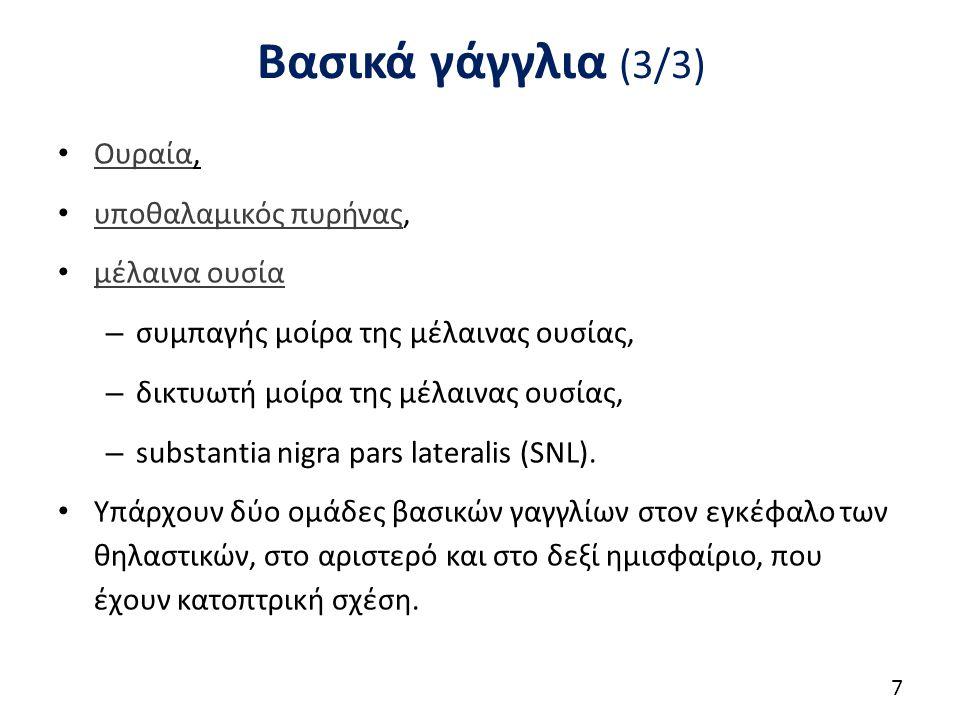Βασικά γάγγλια (3/3) Ουραία, Ουραία υποθαλαμικός πυρήνας, υποθαλαμικός πυρήνας μέλαινα ουσία – συμπαγής μοίρα της μέλαινας ουσίας, – δικτυωτή μοίρα της μέλαινας ουσίας, – substantia nigra pars lateralis (SNL).