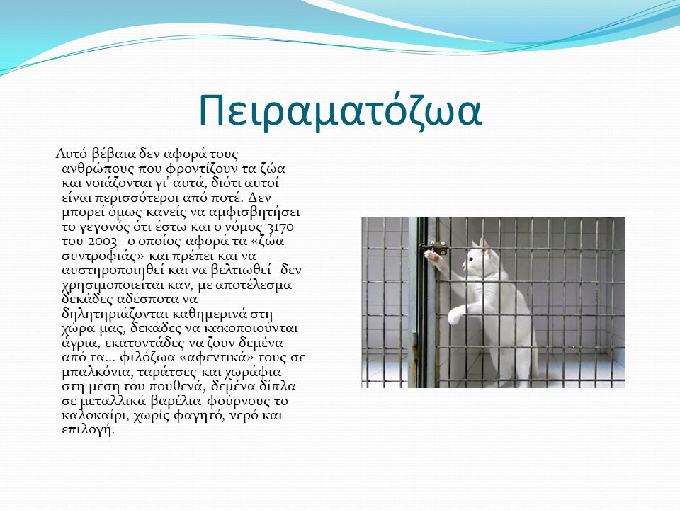 Πειραματόζωα Αυτό βέβαια δεν αφορά τους ανθρώπους που φροντίζουν τα ζώα και νοιάζονται γι αυτά, διότι αυτοί είναι περισσότεροι από ποτέ.