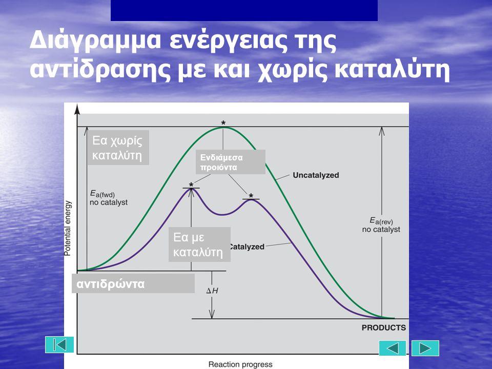 Εα χωρίς καταλύτη αντιδρώντα Εα με καταλύτη Ενδιάμεσα προιόντα Διάγραμμα ενέργειας της αντίδρασης με και χωρίς καταλύτη