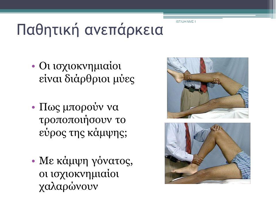 Παθητική ανεπάρκεια Οι ισχιοκνημιαίοι είναι διάρθριοι μύες Πως μπορούν να τροποποιήσουν το εύρος της κάμψης; Με κάμψη γόνατος, οι ισχιοκνημιαίοι χαλαρ
