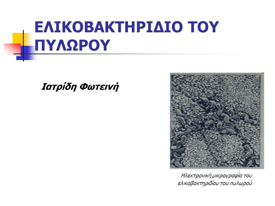 ΕΛΙΚΟΒΑΚΤΗΡΙΔΙΟ ΤΟΥ ΠΥΛΩΡΟΥ Ιατρίδη Φωτεινή Ηλεκτρονική μικρογραφία του ελικοβακτηριδίου του πυλωρού