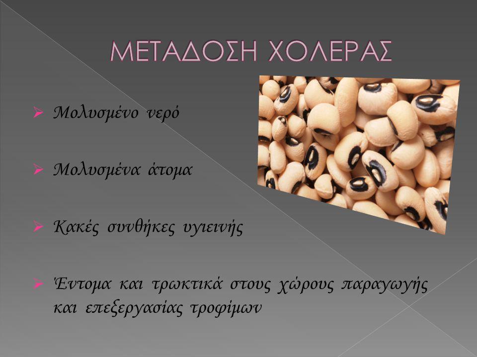 Η χολέρα είναι μια μόλυνση που προκαλείται από το βακτήριο Vibrio cholerae.
