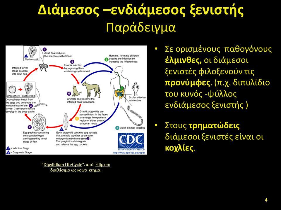 1 ος και 2 ος διάμεσοι ξενιστές Ορισμένα παράσιτα για να ολοκληρώσουν τον κύκλο ζωής χρειάζονται δύο διάμεσους ξενιστές Παράδειγμα ο Οπισθόρχις της γαλής έχει 1 ο ενδιάμεσο ξενιστή κοχλία και 2 ο ψάρι Clonorchis sinensis LifeCycle , από Patho διαθέσιμο ως κοινό κτήμα.Clonorchis sinensis LifeCyclePatho 5