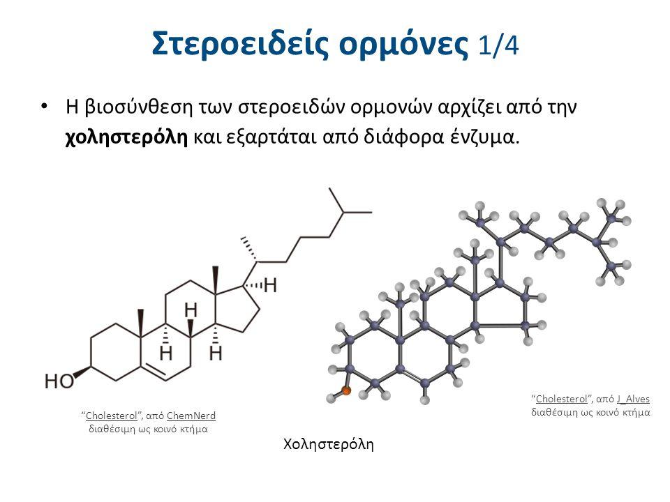 """Στεροειδείς ορμόνες 1/4 Η βιοσύνθεση των στεροειδών ορμονών αρχίζει από την χοληστερόλη και εξαρτάται από διάφορα ένζυμα. Χοληστερόλη """"Cholesterol"""", α"""
