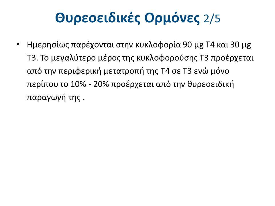 Θυρεοειδικές Ορμόνες 2/5 Ημερησίως παρέχονται στην κυκλοφορία 90 μg T4 και 30 μg Τ3. Το μεγαλύτερο μέρος της κυκλοφορούσης Τ3 προέρχεται από την περιφ