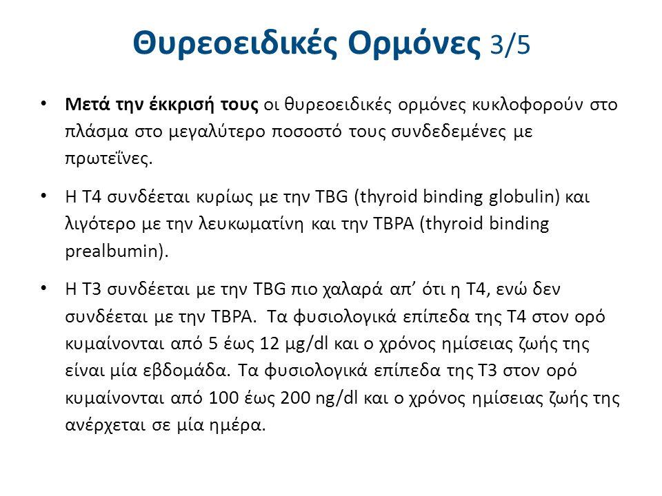 Θυρεοειδικές Ορμόνες 3/5 Μετά την έκκρισή τους οι θυρεοειδικές ορμόνες κυκλοφορούν στο πλάσμα στο μεγαλύτερο ποσοστό τους συνδεδεμένες με πρωτεΐνες. Η
