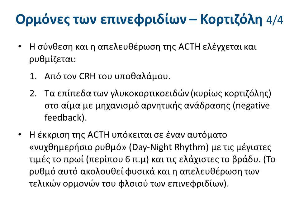 Ορμόνες των επινεφριδίων – Κορτιζόλη 4/4 Η σύνθεση και η απελευθέρωση της ACTH ελέγχεται και ρυθμίζεται: 1.Από τον CRH του υποθαλάμου. 2.Τα επίπεδα τω