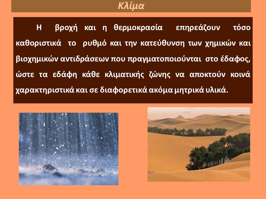 Η βροχή και η θερμοκρασία επηρεάζουν τόσο καθοριστικά το ρυθμό και την κατεύθυνση των χημικών και βιοχημικών αντιδράσεων που πραγματοποιούνται στο έδαφος, ώστε τα εδάφη κάθε κλιματικής ζώνης να αποκτούν κοινά χαρακτηριστικά και σε διαφορετικά ακόμα μητρικά υλικά.