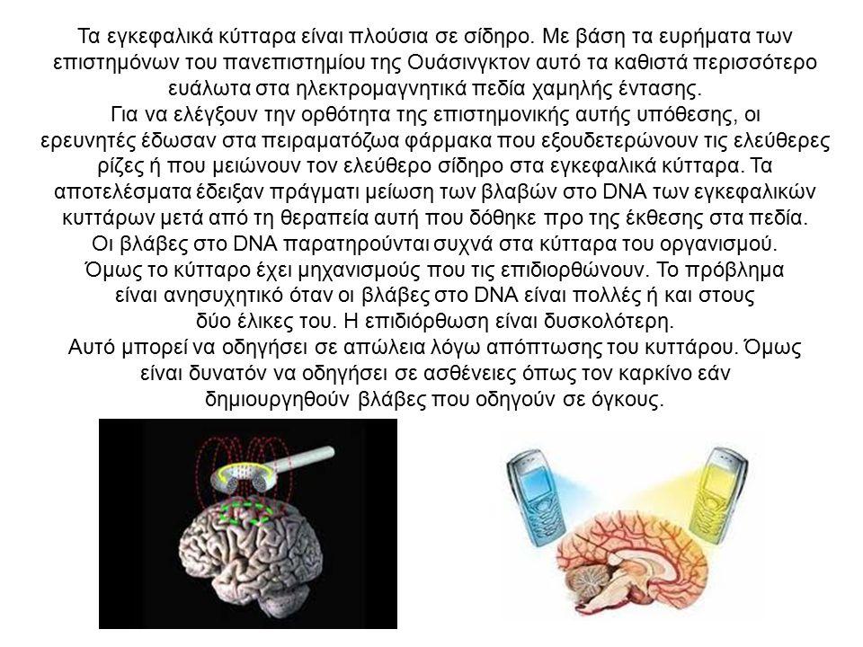 Τα εγκεφαλικά κύτταρα είναι πλούσια σε σίδηρο.