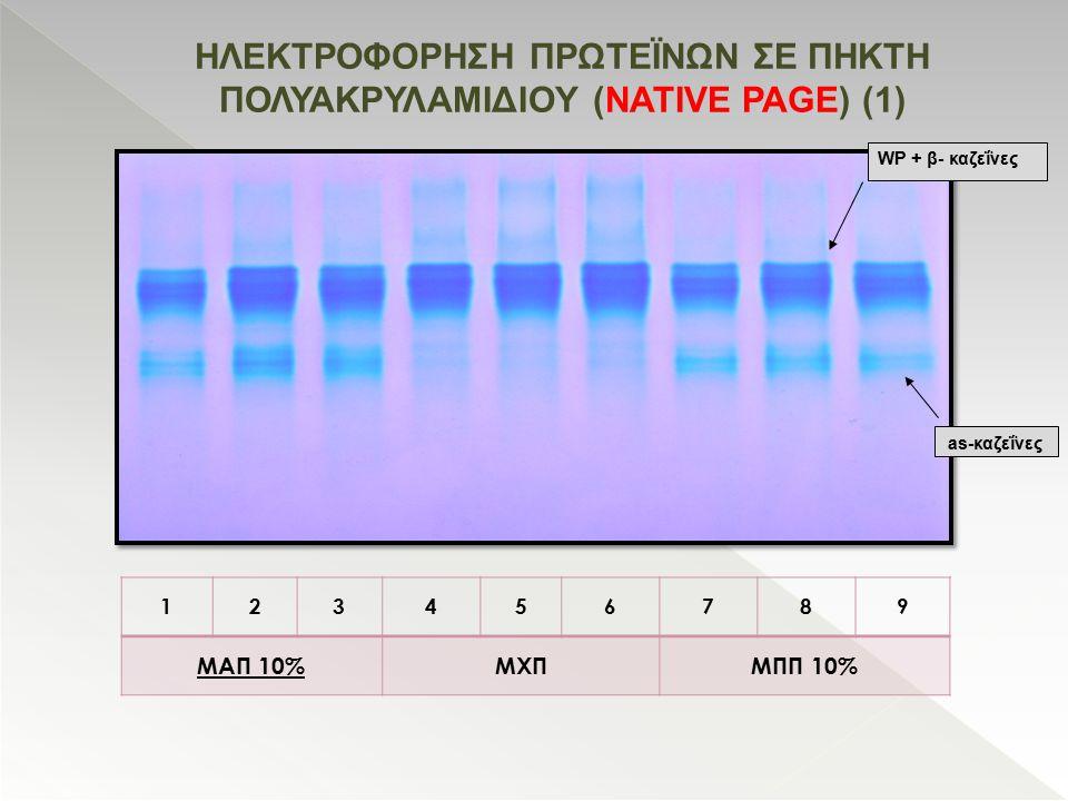 HΛΕΚΤΡΟΦΟΡΗΣΗ ΠΡΩΤΕΪΝΩΝ ΣΕ ΠΗΚΤΗ ΠΟΛΥΑΚΡΥΛΑΜΙΔΙΟΥ (NATIVE PAGE) (1) 123456789 ΜΑΠ 10%ΜΧΠΜΠΠ 10% WP + β- καζεΐνες as-καζεΐνες