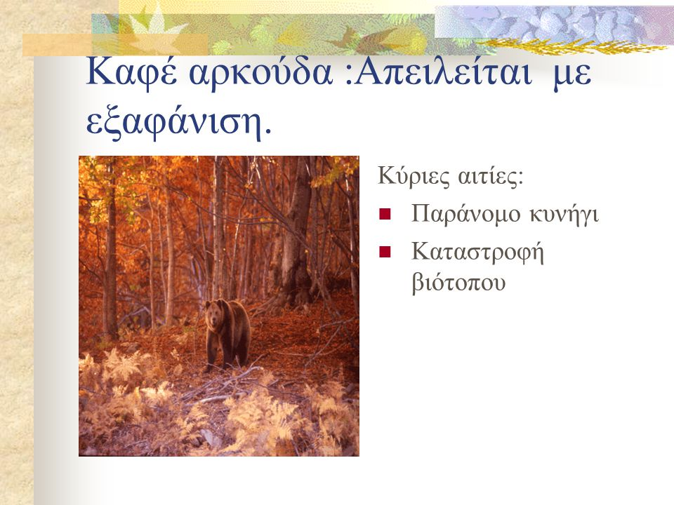 Κόκκινο ελάφι:Απειλείται με εξαφάνιση. Κύριες αιτίες: Λαθραίο κυνήγι Απώλεια βιότοπων