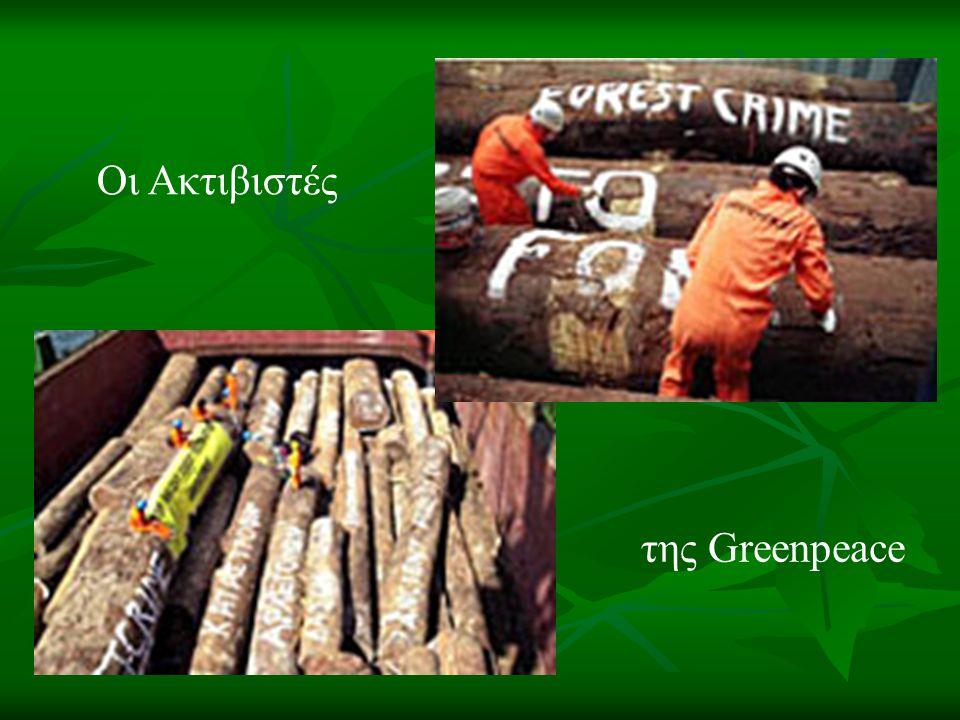 Οι Ακτιβιστές της Greenpeace