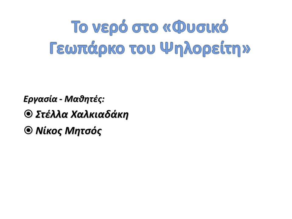 Εργασία - Μαθητές:  Στέλλα Χαλκιαδάκη  Νίκος Μητσός