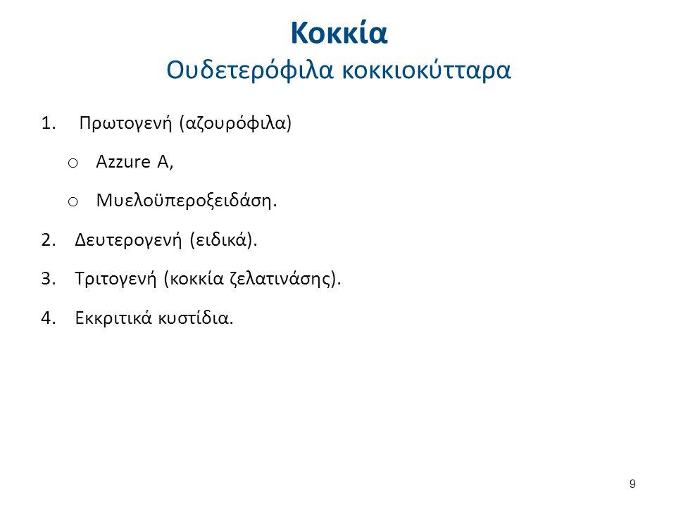 Κοκκία Ουδετερόφιλα κοκκιοκύτταρα 1.Πρωτογενή (αζουρόφιλα) o Azzure A, o Μυελοϋπεροξειδάση. 2.Δευτερογενή (ειδικά). 3.Τριτογενή (κοκκία ζελατινάσης).