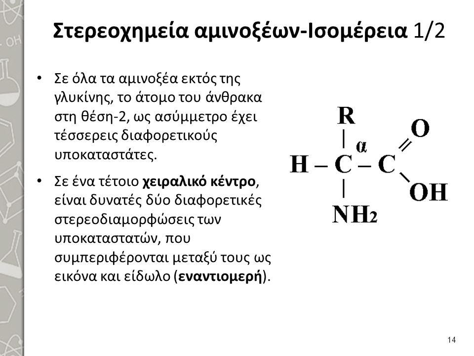 Στερεοχημεία αμινοξέων-Ισομέρεια 1/2 Σε όλα τα αμινοξέα εκτός της γλυκίνης, το άτομο του άνθρακα στη θέση-2, ως ασύμμετρο έχει τέσσερεις διαφορετικούς υποκαταστάτες.