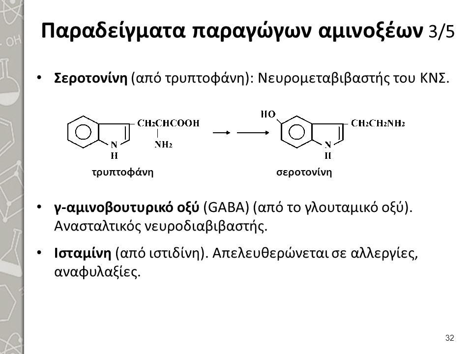 Παραδείγματα παραγώγων αμινοξέων 3/5 Σεροτονίνη (από τρυπτοφάνη): Νευρομεταβιβαστής του ΚΝΣ. γ-αμινοβουτυρικό οξύ (GABA) (από το γλουταμικό οξύ). Ανασ