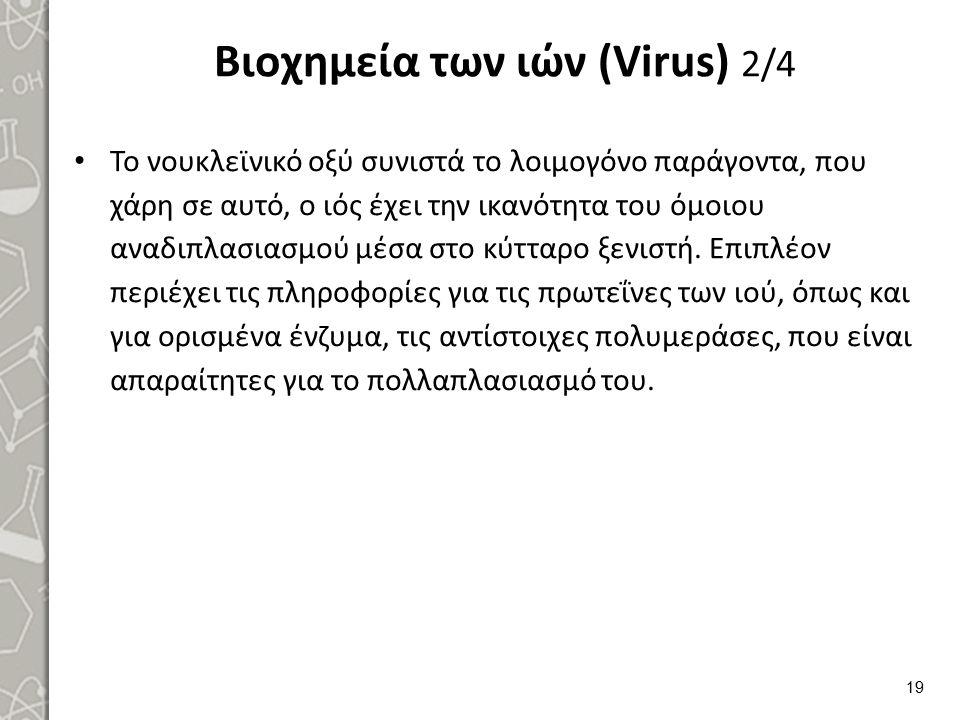 Βιοχημεία των ιών (Virus) 2/4 Το νουκλεϊνικό οξύ συνιστά το λοιμογόνο παράγοντα, που χάρη σε αυτό, ο ιός έχει την ικανότητα του όμοιου αναδιπλασιασμού