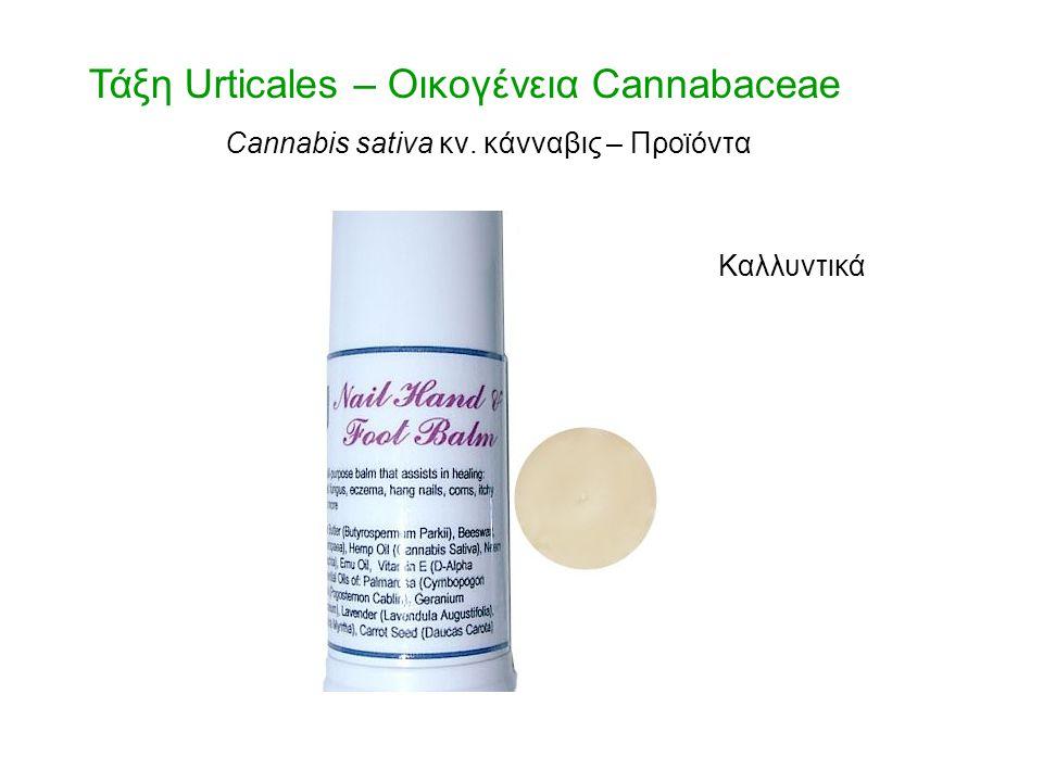 Τάξη Urticales – Οικογένεια Cannabaceae Cannabis sativa κν. κάνναβις – Προϊόντα Καλλυντικά