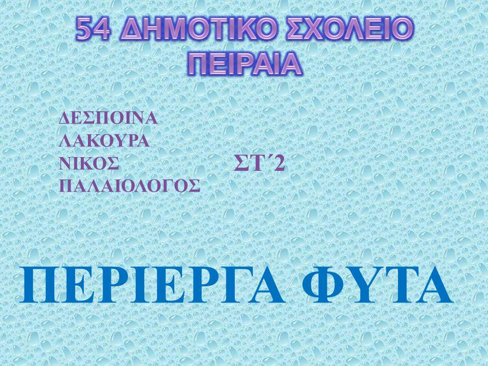 ΠΕΡΙΕΡΓΑ ΦΥΤΑ ΔΕΣΠΟΙΝΑ ΛΑΚΟΥΡΑ ΝΙΚΟΣ ΠΑΛΑΙΟΛΟΓΟΣ ΣΤ΄ 2